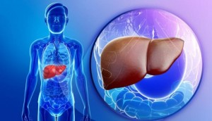 What to eat for fatty liver