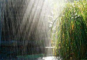 علت بارش کم