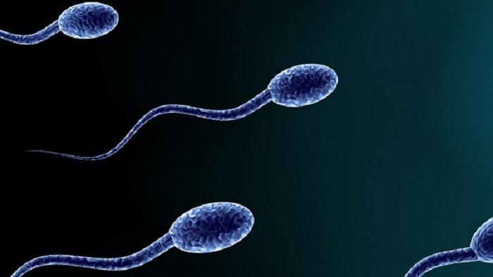راه های جبران اسپرم