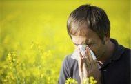 حساسیت فصلی + راههای درمان آلرژی فصلی بهار (عطسه و زکام )