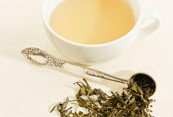 چای سفید و خاصیتهای فراوان آن